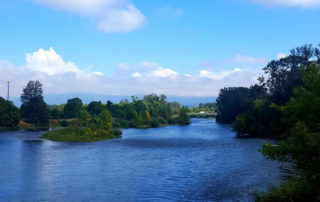 Willamette River from bike path at treatment plant